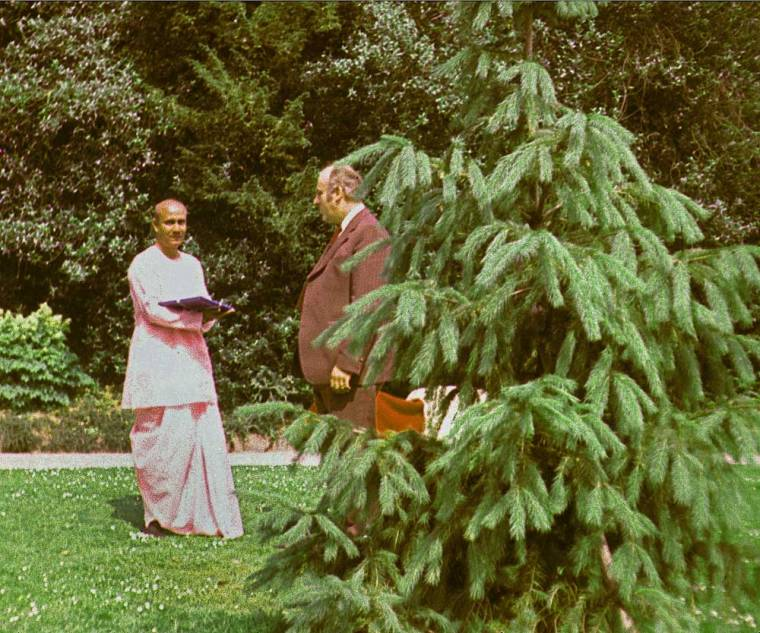 Sri-Chinmoy-tree-1976